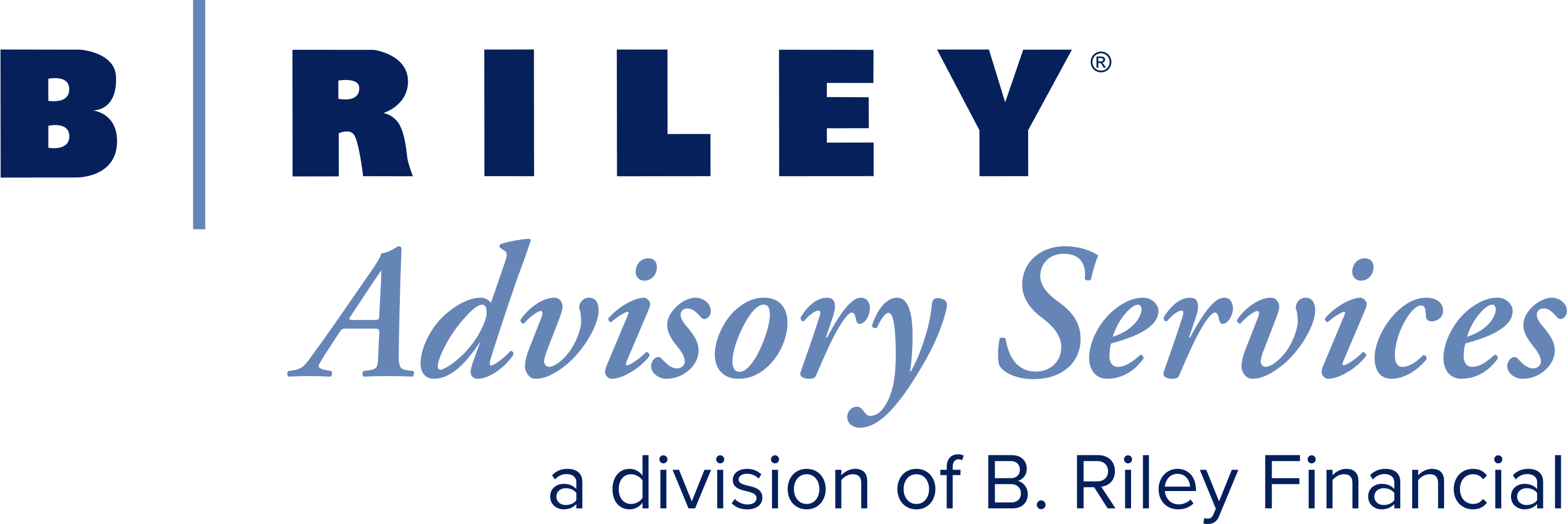 B. Riley Advisory Services